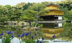 KYOTO, Kodai-ji, giardini (http://russogiuseppefotoeviaggi.wordpress.com/) Tags: japan garden kyoto asia viaggi hanami kodaiji tradizioni