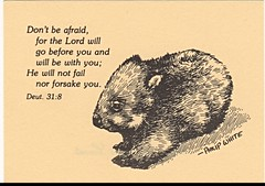 Wycliffe Australia Animal Verses (pdw's atelier) Tags: australia animal art ink sketch bible verse scripture