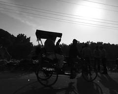 iphone-0528 (Travel on Film) Tags: india mathura hasselblad500cm
