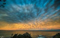 Radiate (e0nn) Tags: ocean sunset cloud clouds pentax harbour tamron steev wollongong bluemile 1024mm steveselby steveselbyphotography pentaxk3