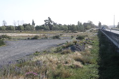 A sad trilogy: Environmental Disaster, Selwyn River, Canterbury (3 of 3, Summer 2016) (brian nz) Tags: newzealand water river environmental canterbury disaster nz environment catastrophe selwyn plundering