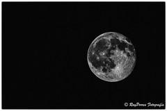 Luna casi llena. 99,6%. Foto tomada el 21 de Junio de 2016 a las 00,08,03 en Oviedo, Asturias, Espaa. (RAYPORRES) Tags: espaa 6 asturias luna 99 oviedo junio 2016 casillena principadodeasturias