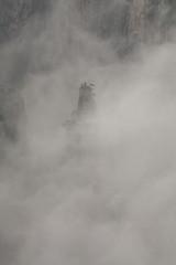 Huangshan (arnd Dewald) Tags: china mist mountain nature berg fog nebel natur    huangshan anhui   arndalarm westsea zhnggu mg506259k7co20sh10wh20eklein