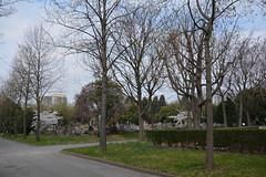 Cimetire parisien de Pantin (John752) Tags: france ledefrance fr pantin