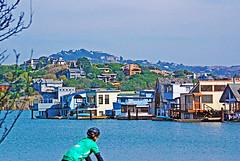 DSC_6747 - Copy (digifotovet) Tags: california houseboat sausalito