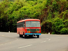 MSRTC Parivartan (kunalas440) Tags: ashokleyland msrtc msrtcashokleylandbus msrtcparivartan msrtcordinaryexpress msrtcnonacbus ghodbunderghat