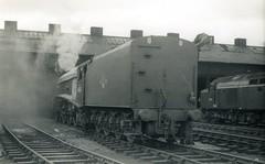 img785 (OldRailPics) Tags: steam aberdeen kingfisher british locomotive railways ferryhill 61b 60024
