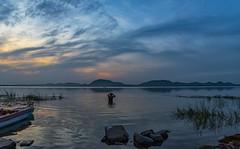 Bathing (Padmanabhan Rangarajan) Tags: kolavai bathing paranur lake chennai india chengalpattu rural