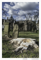 Without Tree (JAVIER.HERRERA) Tags: cemetery edinburgh lapida cementerio tomb tumba edimburgo tombsstone