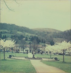 Tredegar Park borderless (L. McG.-E.) Tags: film polaroid sx70 instant analogue everydaybeauty px70 impossibleproject mortalmuses colorprotection