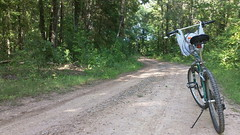 cycling a woodland road (under the skies of arkansas) Tags: road bike woodland cycling woods trail arkansas