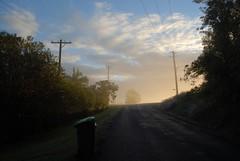 the golden garbageman is near (dustaway) Tags: morning mist nature fog sunrise landscape countryside morninglight scenery earlymorning australia nsw trashbin garbagebin wheelybin northernrivers goldenfog suburbansunrise morninglandscape wastecollection mistglow
