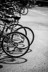 Ride (Sharon Drummond) Tags: travel summer bw bike bicycle july niagara winery niagaraonthelake 2013