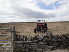 Red Tractor Guarding Wall (Magic Pea) Tags: red tractor field wall photography coast scotland photo gate minimal stonewall caithness redtractor magicpea