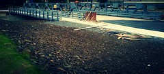 Under Construction (... E M A ...) Tags: wood bridge brown grass metal outside outdoors evening site construction puertorico under gray ground equipment dirt asphalt gravel roocks gs3 aibonito flickrandroidapp:filter=none