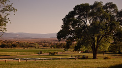 Ghost Ranch Farmland (RyanSMcKee) Tags: mountains newmexico southwest beautiful landscape nikon day desert nikond50 clear 169 okeefe abiquiu ghostranch ryanmckee vision:mountain=058 vision:sunset=063