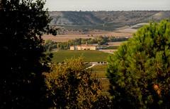 Abada Retuerta LeDomaine (abadiaretuertaledomaine) Tags: abbey hotel vineyards turismo xii monasterio abada siglo terroir viedo relaixchateaux abadaretuerta ledomaine