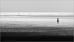 back home (nevil zaveri) Tags: sea people blackandwhite bw woman india reflection beach water monochrome silhouette work walking landscape photography blog women photographer place photos walk stock images minimal photographs photograph catch minimalism zaveri silhoutte gujarat stockimages peopleatwork travelogue bhaat gujrat nevil navratri fisherwoman navsari peopleandplaces norta medharbhaat nevilzaveri minimalisticocean