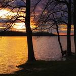 Silhouettes-Sunset thumbnail