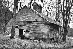 Sugarbush Farm VT 1 (alamme) Tags: trees bw barn rural woods vermont country sugarbushfarm