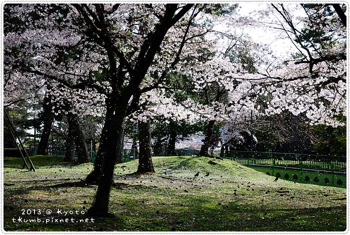 2013-04-05 15.41.47.jpg