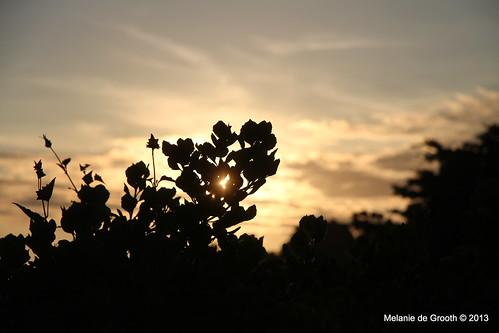 Sunrise Ballito