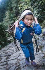 Porter boy from Nepal (Arsenii Gerasymenko) Tags: road nepal man children kid hard nepalese himalaya job porter sherpa carry
