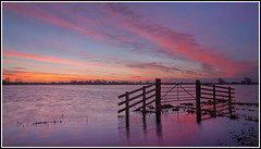 Tealham Moor Dawn (CliveDodd) Tags: flooding flood somerset moor levels floods tealham