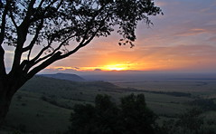 Ends of The Earth (Just Call Me Dave) Tags: africa tree clouds sunrise kenya songlyrics maasaimara