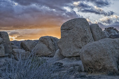 41502 (rudenoon) Tags: california sunset usa joshuatree joshuatreenationalpark monzogranite sal2470z sonya900