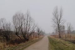 flleden4 (NKO_dk) Tags: nature copenhagen landscape sony 25 camerabag kbenhavn amager a58 amagerflled