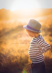 Light (Megan Dendinger) Tags: california ca boy sun childhood redhead orangecounty oc childphotographer sweetlight familyphotographer kidsphotographer commercialphotographer meganalisaphotography