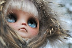 One Windy Wednesday (Lawdeda ) Tags: pictures 3 cat wow wednesday was doll erin windy it just and cape blythe custom edition grumpy sooo phew grumpycat the fbl deir ixnay missblythe2012
