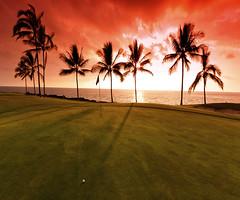 (mthomas439) Tags: travel sunset vacation sky usa sun tree sports silhouette ball golf landscape outdoors hawaii polynesia evening twilight dusk weekend horizon scenic nobody pacificocean palmtree serenity golfcourse northamerica leisure daytime backlit hobbies idyllic golfball oceania sportsequipment pacificislands pacificstates islandofhawaii overcastsky arecales konacoast sportsvenue golfequipment horizonoverwater romanticsky
