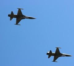 BDF F-5s (jblaverick) Tags: art freedom day fighter force 26 jonathan aviation air wing airshow april gaborone botswana ub f5 defence bdf canadair rehearsals northrop flypast cf5 laverick cf116 botswanaaviationart