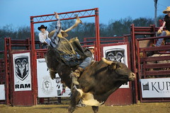 P 511 (facesofcowtown) Tags: rodeo p augusta sussexcounty augustanj sussexcountynj sussexchristianschool