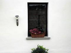 Windows (mauertrocken) Tags: windows wand streichen grieben lwenbergerland fassadenfarbe
