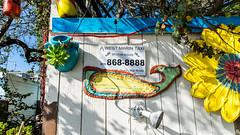 2014_03_SanFrancisco_Trip_265_Stinson_Beach_HD (Nigal Raymond) Tags: sanfrancisco california usa beach marincounty stinson muirwoodsnationalmonument  goldengatenationalrecreationarea eflens a7r nigalraymond wwwnigalraymondcom metabones sonya7r 20140321