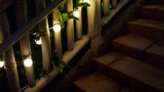 Bridge of Lights (MDawny72) Tags: lighting bridge vacation lights hawaii oahu disney february magical whimsical pathways 2015 myphotography disneyvacationclub aulani