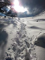 . (Hedrael) Tags: winter mountain snow spain nikon path mallorca tramuntana nikonaw120