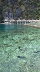 RIMG0169 (k0re) Tags: travel beach nature philippines elnido palawan jackfish miniloc gianttrevally