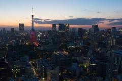 ILCA-77M2 DSC03730.jpg (san-ue) Tags: tokyo tokyotower     ilca77m2 77ii