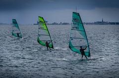 Windsurfers racing (frankmh) Tags: race denmark skne sweden outdoor windsurfing windsurfer viken resund