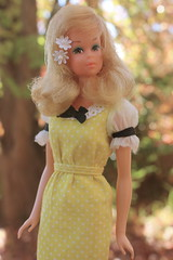 My New Francie Wearing a Dress from Wizzy! (DeanReen) Tags: flowers orange brown white black yellow vintage hair 1971 mod pretty dress head barbie mexican busy growing 1970 curl hybrid 1972 quick qc mattel francie gph