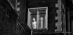 IMG_9836-2 (mrpauladams) Tags: summer blackandwhite color colour building mannequin window monochrome dark mono canal sinister watching steps aylesbury overlooking overseeing insidious poppyflower