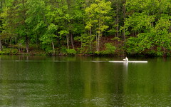 Row row row (Rob G Ski) Tags: spring beavercreek crozet 50mmf17 singlein