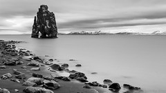 I wonder why they're here... (OR_U) Tags: longexposure sea sky blackandwhite bw mountains beach rock coast blackwhite iceland widescreen alien le fjord oru schwarzweiss 169 invasion alieninvasion 2016 hvitserkur hnafjrur