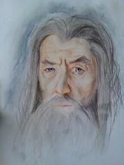 Gandalf (Di-Snake) Tags: wizard pastel gandalf tolkien mag thehobbit pastelpencils fascinator   fabercasrell