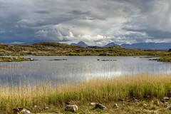 Reeds & Distant Hills (StickyToffeeQueen) Tags: mountains reeds hills sutherland lochan