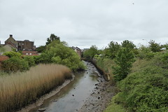 Millfleet (Gayford River) (yellow book) Tags: norfolk lynn northsea kingslynn riverouse greatouse hanseaticleague thewash
